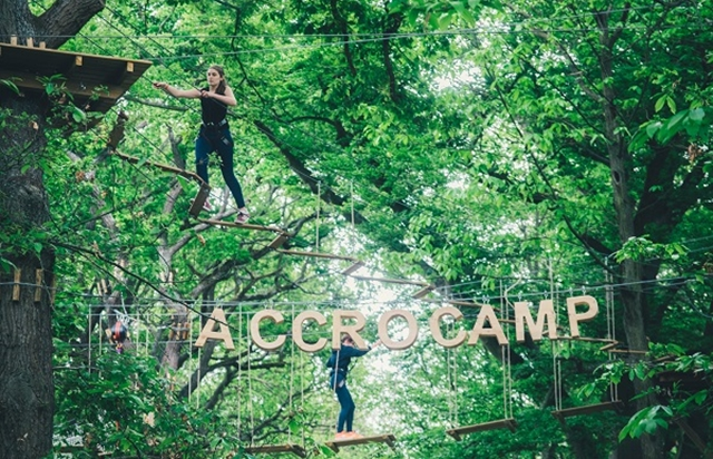 Treetop adventure at Chaville