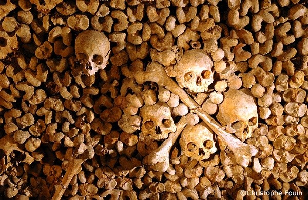 Catacombs of Paris - Priority entrance with audioguide